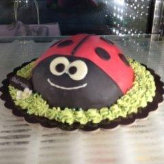 Pasticceria dolce mania – Torte 24